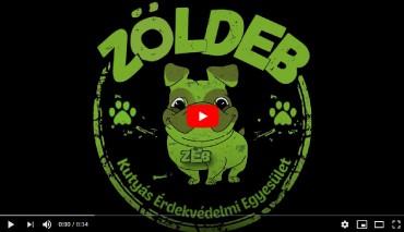 Ismerd meg a ZöldEB-et videó borító