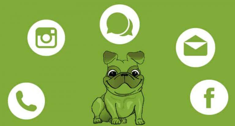 A ZöldEb Egyesület elérhetőségei