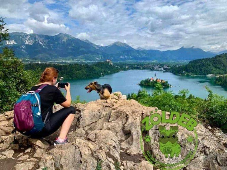 Szlovéniába kutyával | ZöldEb - EbUtazó rovata